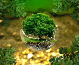 Exploitation agricole : les grandes étapes de la certification environnementale