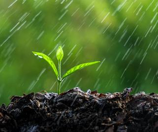 Agro-écologie : en agriculture, tout part du sol !